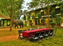 Best Hotels in Chitwan National Park